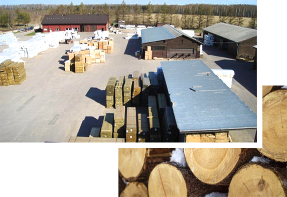 Latvia Timber International